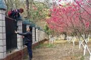 Туристы перелезли через забор в тюремный сад. // shanghaiist.com