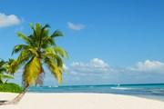 Пляжи Доминиканы ждут российских туристов. // Anna Jedynak, shutterstock