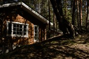 Отель предлагает уютные коттеджи в лесу. // seahomeresort.ru