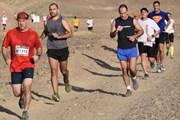 Маршрут марафона пролегает по пустыне. // desertrun.co.il
