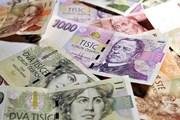 Крона останется национальной валютой Чехии. // praga-praha.ru