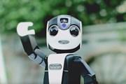 Робот станет гидом для туристов. // slashgear.com