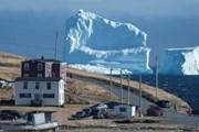 Гигантский айсберг у берегов Ньюфаундленда // Greg Locke , Reuters