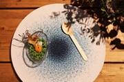 Посетители находят картины Пикассо на тарелках. // espanarusa.com