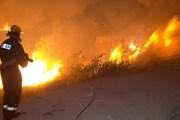 К тушению огня подключились военные. // Independent.mk