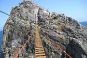 98-метровый мост проходит над морем. // komtv.org