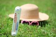 Туристам из России необходима адаптация к жаркому климату. // Africa Studio, shutterstock