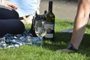 Гости фестиваля смогут устроить пикник с вином. // prague.eu