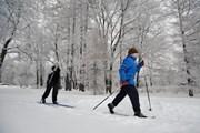 Лыжни из искусственного снега создадут в семи парках столицы. // GoTonight.ru