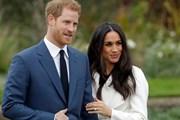Принц Гарри и Меган Маркл // Fox News