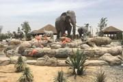 Dubai Safari Park // dubai92.com