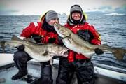 Из Норвегии можно вывезти не более 20 кг рыбы. // sportquestholidays.com