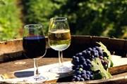 Крымские вина представят туристам на специальных ярмарках. // sevas.com