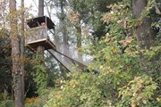"""Безопасный аттракцион на высоте 15-18 метров над землей - """"упругий лес"""". // selvaventura.com"""