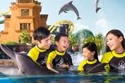 Огромный аквапарк будет работать 365 дней в году. // atlantissanya.com