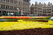 Цветочный ковер в Брюсселе можно увидеть лишь раз в два года. // Wim Vanmaele, flowercarpet.prezly.com