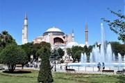 Turkish Airlines изменила правила по бесплатным экскурсиям и бесплатным отелям в Стамбуле