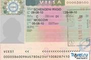 Новые правила вступили в силу 2 февраля. // Travel.ru
